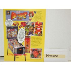 Dr. Dude Pinball Machine Flyer